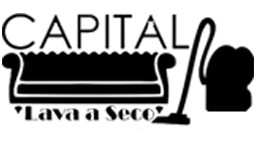 Logomarca da Capital lava a seco